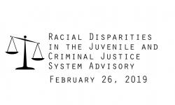 Racial Disparities Advisory Panel - February 26, 2019