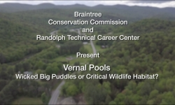 Braintree and Randolph Conservation Commissions Presents Vernal Pools