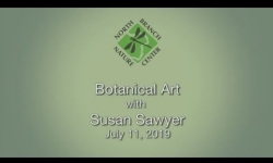 North Branch Nature Center - Botanical Art with Susan Sawyer
