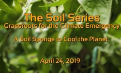 The Soil Series - A Soil Sponge to Cool the Planet