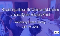 Racial Disparities in the Criminal and Juvenile Justice System Advisory Panel 7/10/2018