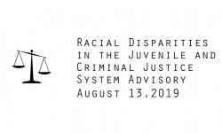 Racial Disparities Advisory Panel - August 13, 2019