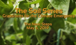 The Soil Series - The Next Steps