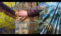 Vermont Tree Board - 4th Annual Festival of Trees