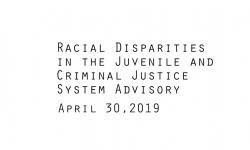 Racial Disparities Advisory Panel - April 30, 2019