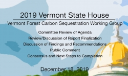 Vermont State House - Vermont Forest Carbon Sequestiation Working Group 12/18/19
