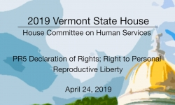 Vermont State House - PR5 Declaration of Rights; Right to Personal Reproductive Liberty 4/24/19