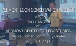 Vermont Center for Ecostudies - Vermont Loon Conservation Project