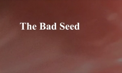 Celluloid Mirror - The Bad Seed