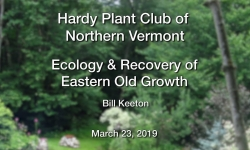 Hardy Plant Club of Northern Vermont - Ecology & Recovery of Eastern Old Growth