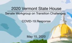 Vermont State House - Senate Workgroup on Transition Challenges 5/15/2020