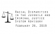 Racial Disparities Advisory Panel - February 26, 2019