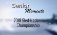 Senior Moments - Sled Hockey Championship 2018