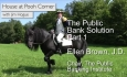House on Pooh Corner: The Public Bank Solution with Ellen Brown Pt1