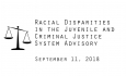Racial Disparities Advisory Panel - 9/11/2018