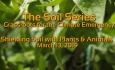 The Soil Series - Shielding Soil with Plants and Animals 3/13/9